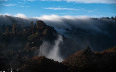 Herbst im Bölchengebiet